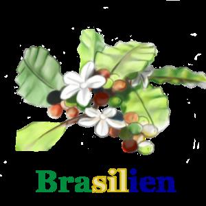 Brasilien_Vorschau