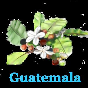 Guatemala_Vorschau