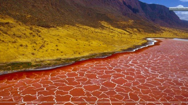 Lake.Natron.original.1312