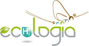 Logo-remasterise-2013-500px