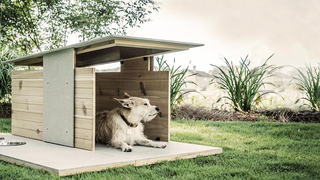 Une habitation design pour nos animaux !
