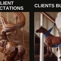 Client expectations vs Client budget