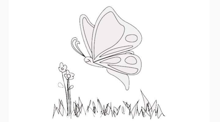 how-to-draw-a-butterfly_05_a