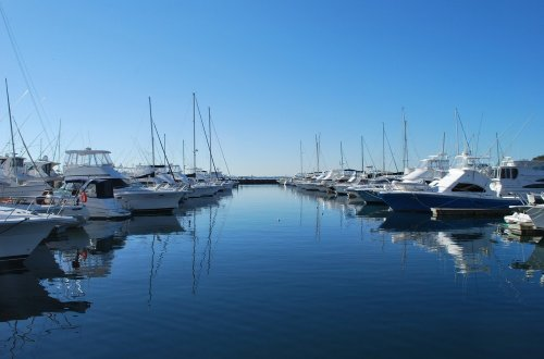 Things to do in Port Stephens