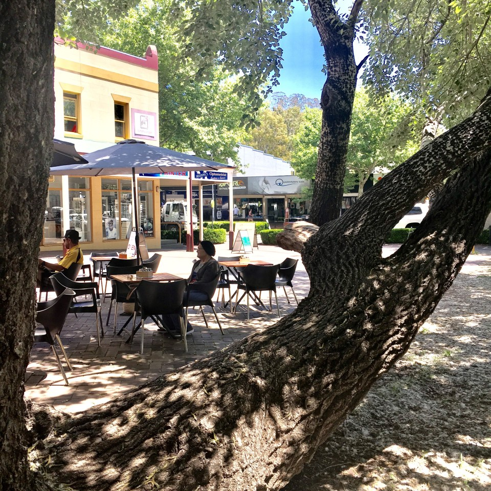 where to eat in Picton