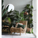 how house plants can change your home