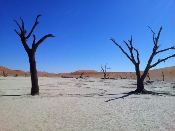 la_marais_de_la_mort_namibie
