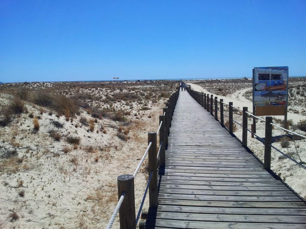 La jolie plage de tavira en algarve au Portugal