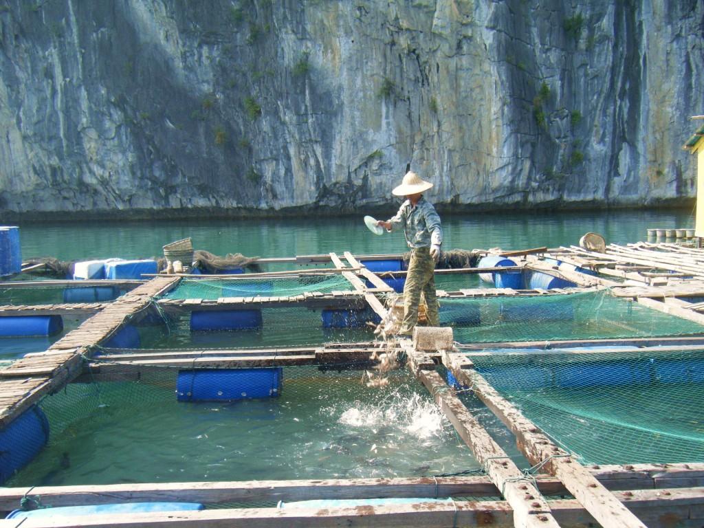 Village-de-pêcheurs-Baie-dalong-vietnam