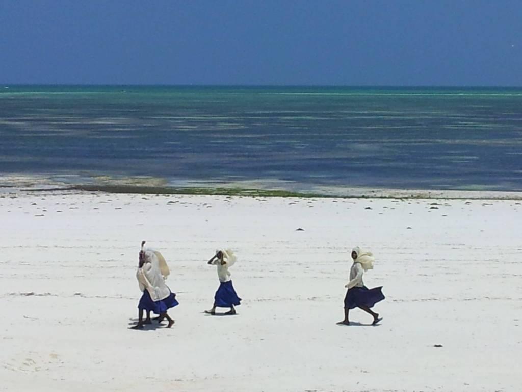 Plage Uroa à Zanzibar