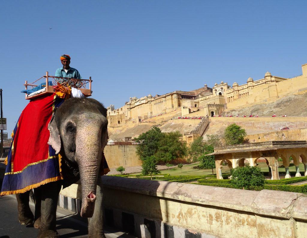 Fort d'Amber balade en elephants inde