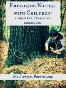 homeschool, homeschooling, education, nature study, charlotte mason, nature exploration, parenting