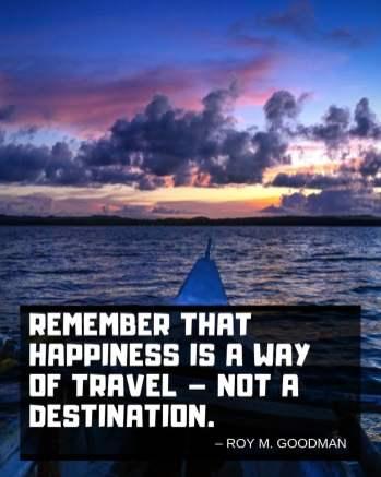 roy-goodman-travel-quote