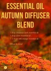 essential-oil-autumn-diffuser-blend-MNF