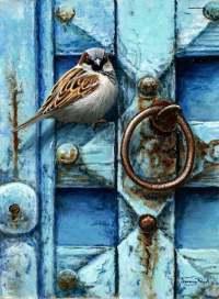 1274-House-sparrow-blue-door.jpg-nggid041413-ngg0dyn-200x300x100-00f0w010c010r110f110r010t010