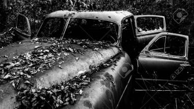 20426750-black-and-white-image-of-a-rusty-abandoned-car-covered-in-fallen-leaves-found-in-the-woods-