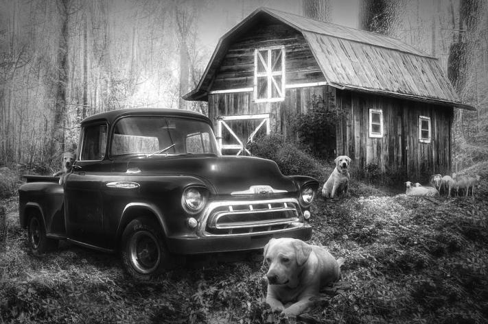 love-that-old-truck-at-springtime-black-and-white-debra-and-dave-vanderlaan