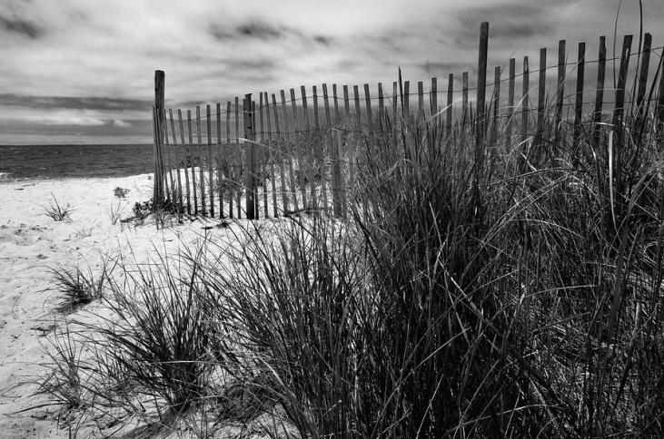 nantucket-harbor-beach-dunes-thomas-schoeller