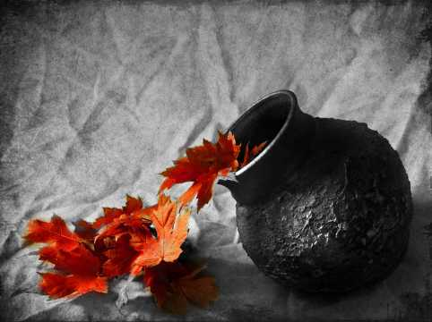 still-life-photography-black-and-white-with-color-01_2