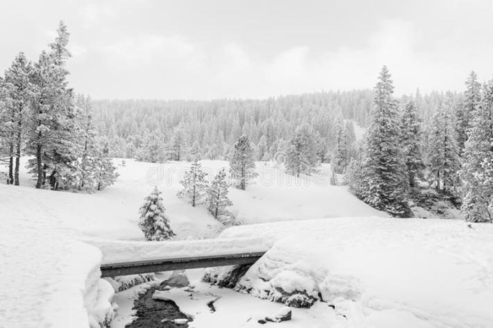 high-key-winter-landscape-bridge-stream-high-key-winter-landscape-bridge-stream-foothills-132764291