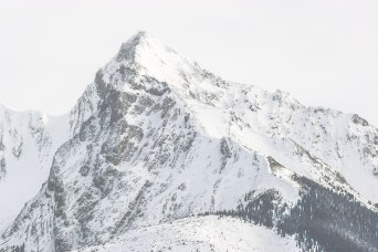 The textured faces of Leah Peak are highlighted by the bright side lighting of a winter day in Jasper National Park, Alberta, Canada