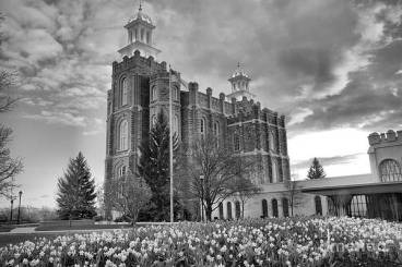 logan-temple-over-the-flowers-black-and-white-adam-jewell