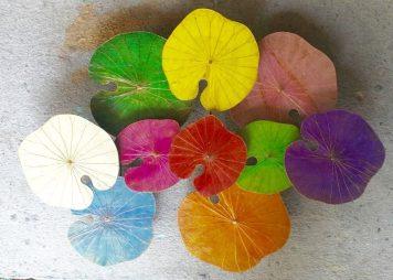 Multicolour-Lotus-Living-3-D-Art-2-2-800x571