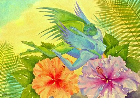 hibiscus-faeries-jennifer-baird