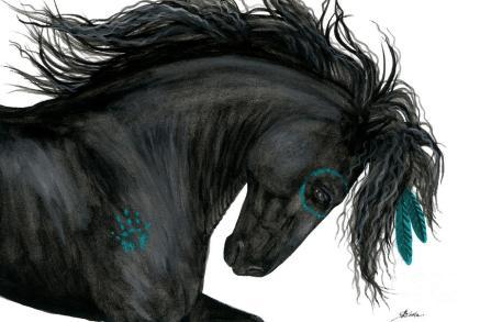 turquoise-dreamer-amylyn-bihrle