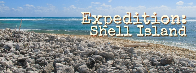 Expedition Shell Island