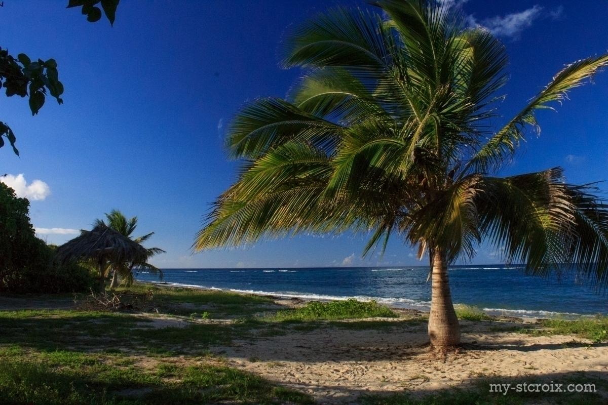 Columbus Cove Beach Salt River St Croix