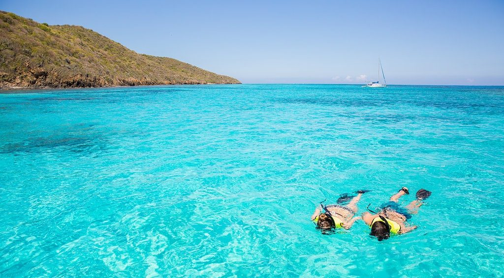snorkeling at Buck Island St Croix with Caribbean Sea Adventures
