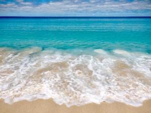surfs up sandy point
