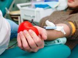 Общий анализ крови можно ли при месячных. Можно ли сдавать анализ крови при месячных: допустимые и запрещенные анализы. Какой период наиболее благоприятен для анализов