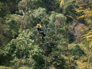 jungle flight chiang mai