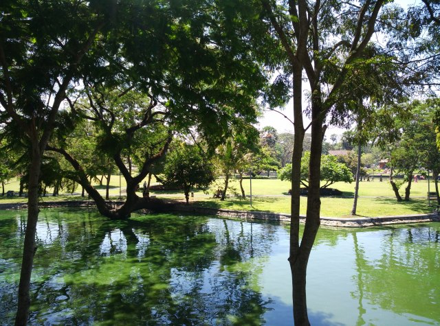 one of Yangon's green spots