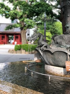 浅草寺の龍