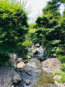 浅草寺境内の小川