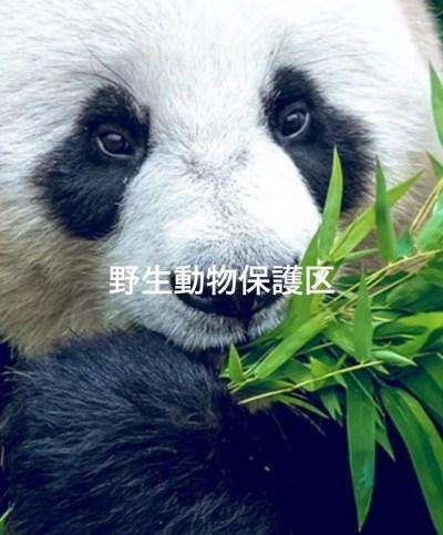 シンガポール野生動物保護区