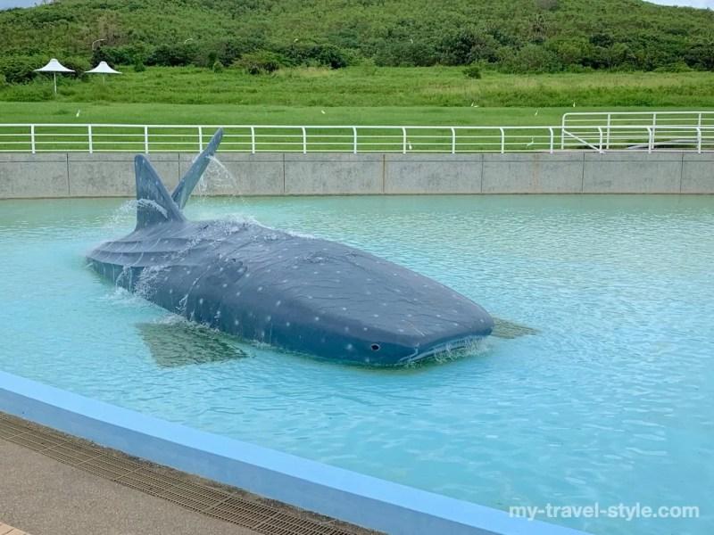 国立海洋生物博物館へ実際に行ってみたレビュー