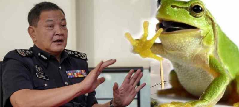 Ketua Polis Negara Minta SPRM Siasat 'Katak Politik'