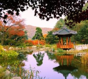 晨静树木园