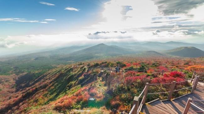 韩国枫叶2018 汉拿山