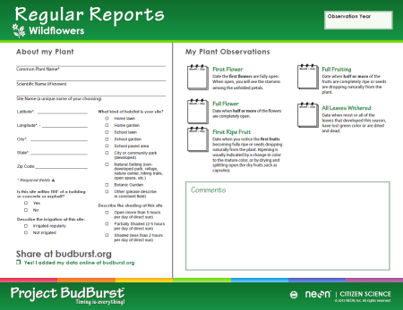 PHOTO: This is a printout from the Project BudBurst Website, that asks about the location of the plant and provides places to record bloom times, as well as other comments.