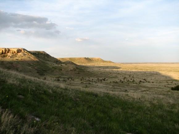 Dr. Skogen and her team start their evening pollinator observations at dusk in Comanche National Grasslands.