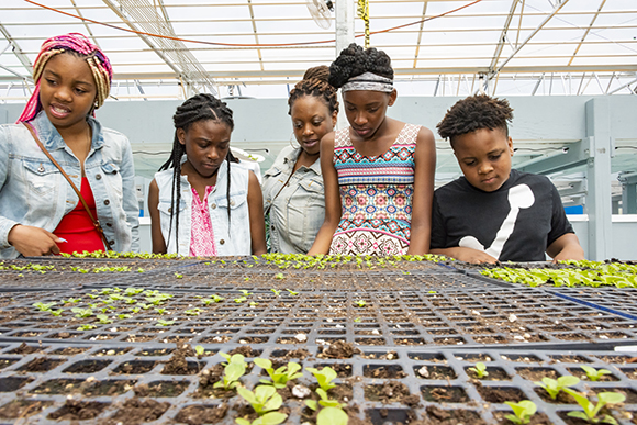 Kids look over flats of seedlings growing at the Farm on Ogden's greenhouses.