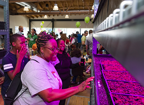 Visitors check out the purple grow lights near the aquaponics system at the Farm on Ogden.