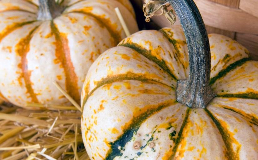 """A Halloween Treat: Pumpkin """"Roll-ups"""""""
