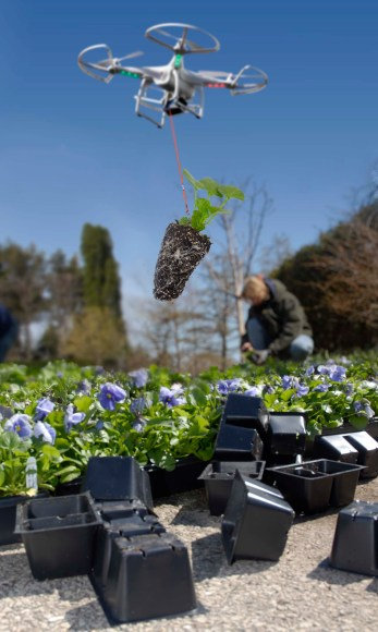 PHOTO: Drone quadcopter delivers a seedling to be planted.