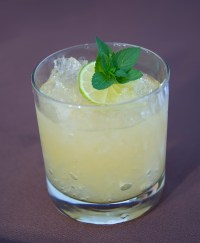 PHOTO: Mint julep by Bill Bishoff.